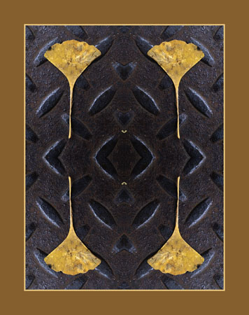 A study of a Gingko leaf and a Manhole cover