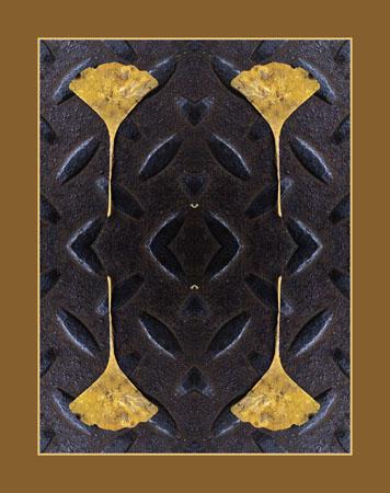 A study of a Gingko leaf and a Manhole cover