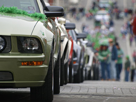 A calm herd of Mustang GTs with the St Patrick's parade in tow.
