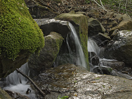 A mossy green rock and a spring waterfall
