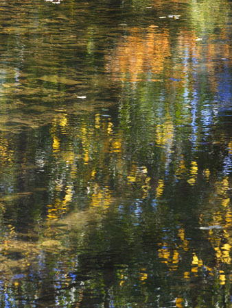 Vivid reflections of the colors of Fall on Fassnight Creek