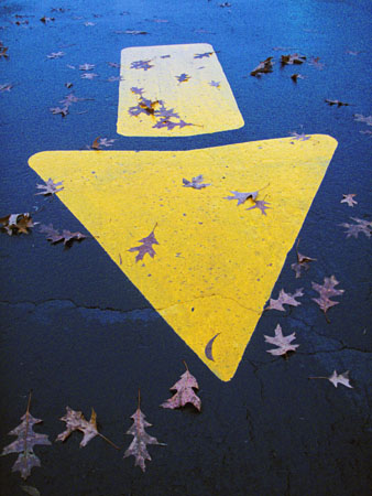 The autumn blacktop arrow and leaves at dusk.