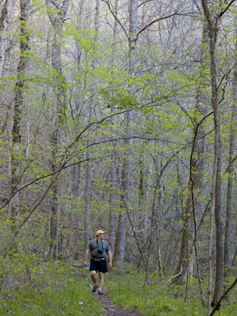 I dream of a spring-time hike in the glorious Ozark