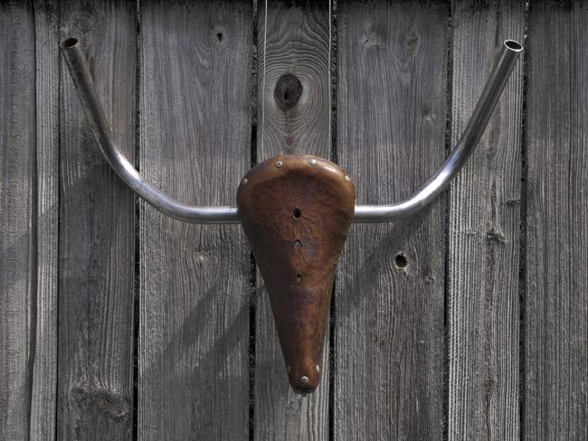 Bull's Head #9