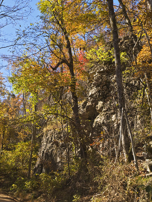 Near Cave Springs
