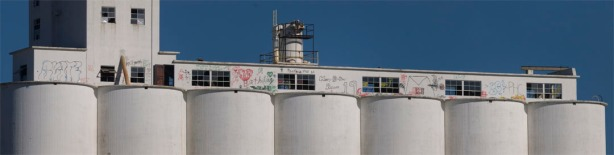 The graffiti on the MFA grainery