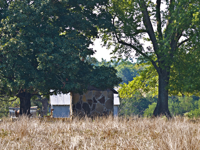 Ozark  Giraffe bunkhouse side view