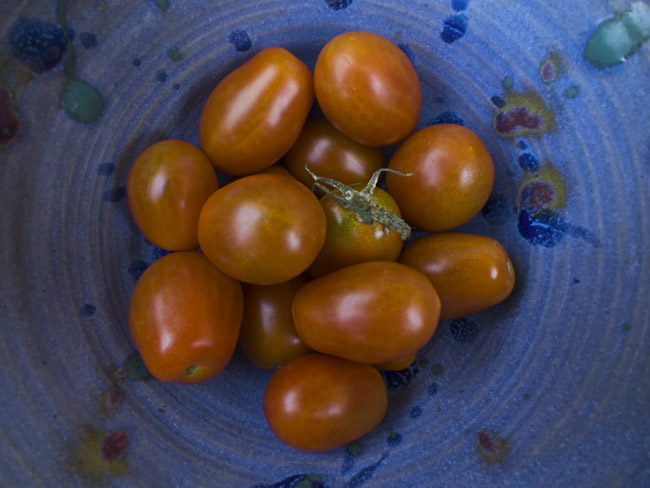 Freshly picked grape clustered Tomatoes