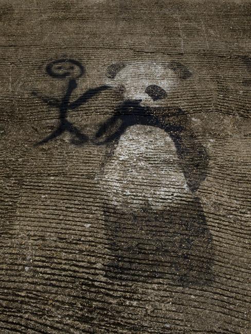 The Panda, Graffiti on the Jacks Fork river.