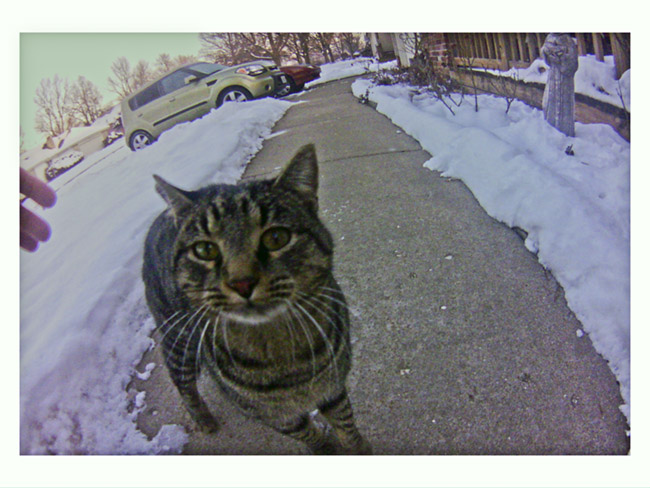 Handsome checked out the Little Cyclops camera