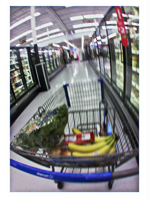 Shopping for Groceries , a Little Cyclops composition