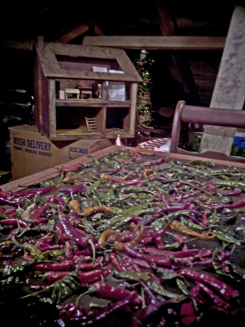 Christmas 1939, my grandfather went to local lumberyard and purchased 40 cents worth of scrap lumber to build my mom a dollhouse. The year is 2014 and this year's crop of cayenne peppers are layed out to dry on a screen-door. The photograph was taken with a Digital Diana camera using the Rhianna filter .