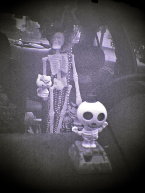 Day of the Dead, dashboard still-life, a Digital Diana photograph