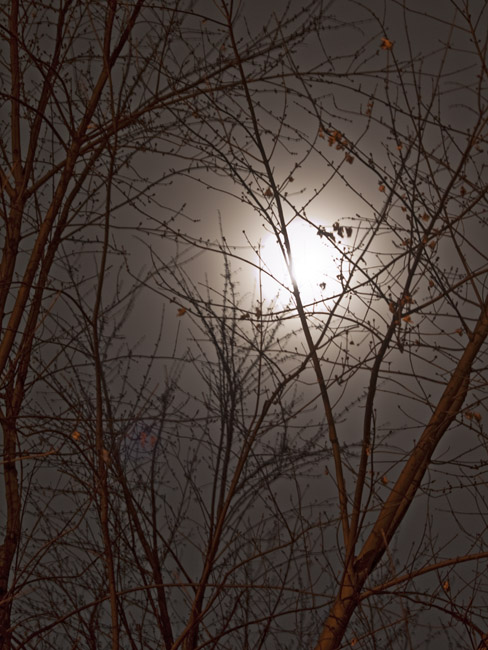 The last moonlit night of the Year 2014