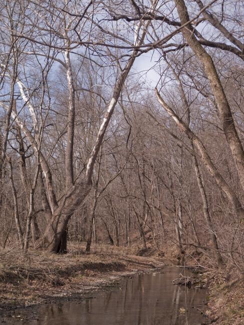 Crane Creek in winter