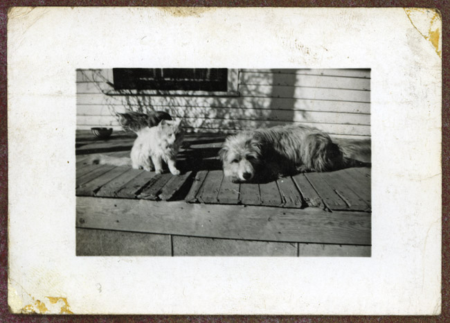 Fluffy and Rivets hung out on the porch of Bertha and Walter Sprick's house in Julesburg, Colorado
