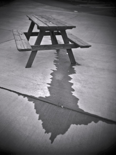 Picnic table and water runoff, 100 Days of the Mundane