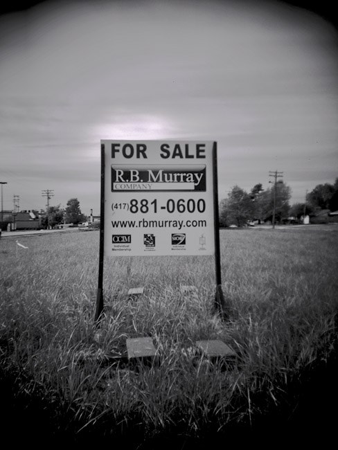 Lot For Sale, 100 Days of the Mundane