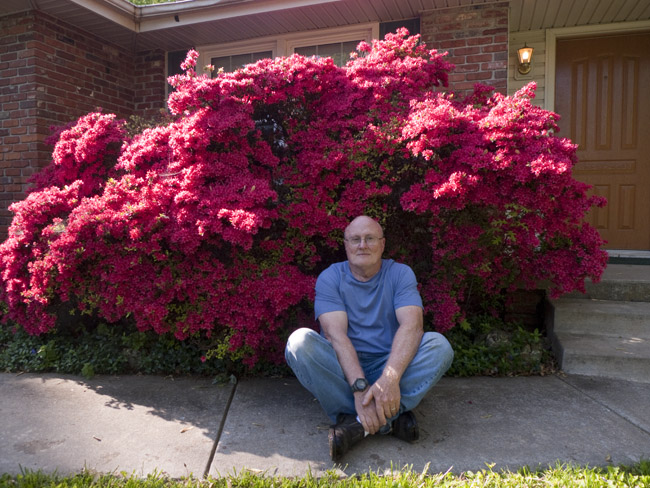 Stan's forty year old Azalea