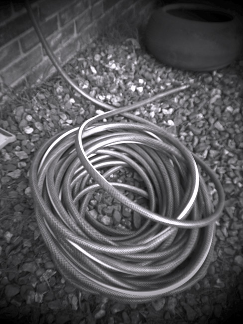 Garden hose, 100 Photographs of the Mundane