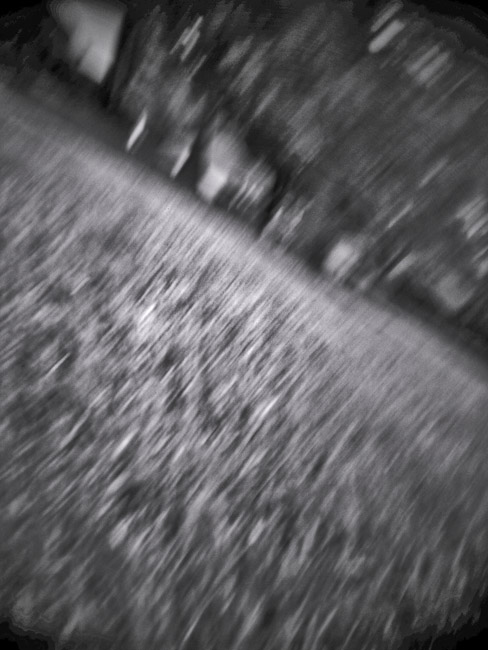 Front  yard abstraction, 100 Photographs of the Mundane