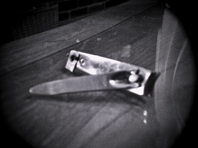 Broken Fingernail Clippers, 100 Photographs of the Mundane