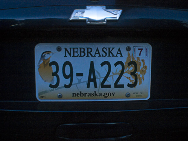 Nebraska License Plate, the state bird is the Western Meadowlark and the state flower is the Goldenrod,