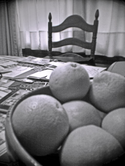 A Bowl of Oranges, 100 Photographs of the Mundane