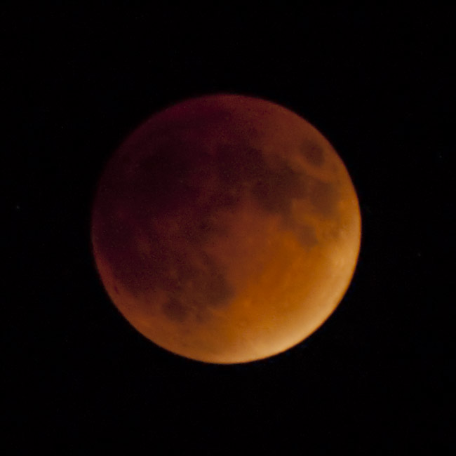 The Lunar Eclipse of the Blood Moon, image 3
