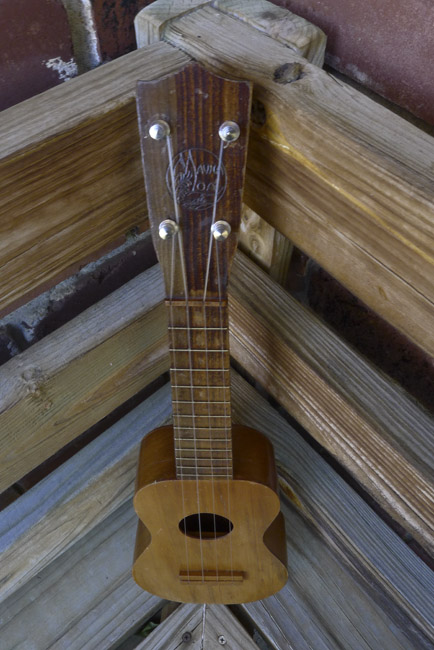 Head stock of the Mauna Loa Ukulel