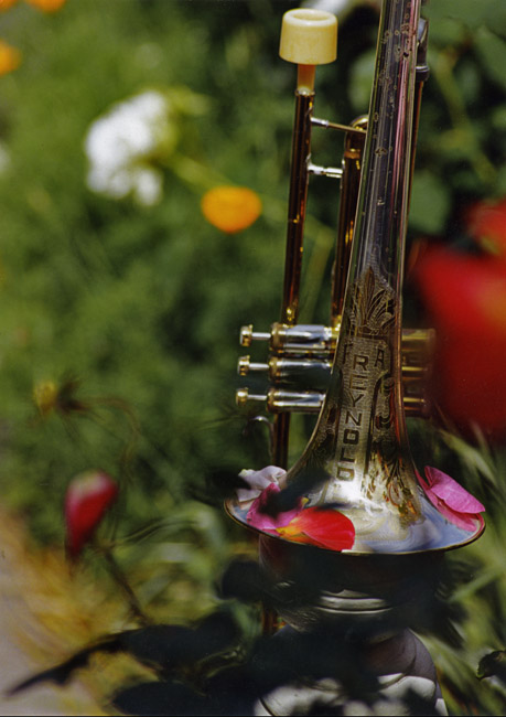 Valve Trombone and Roses, circa 1994