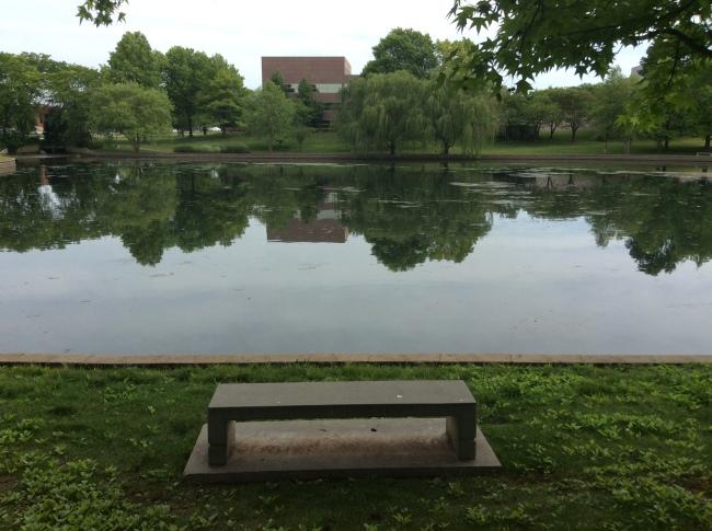 A bench at Burrell Lake