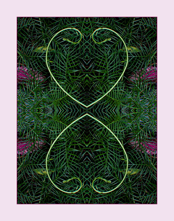Heart Vine Filigree, Mandala