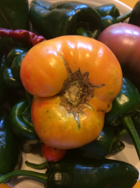 Heirloom tomatoes on a bed of Poblano Peppers