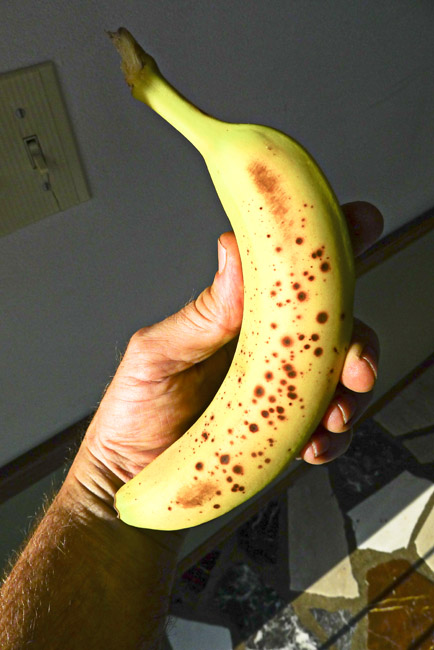 A banana with brown spots