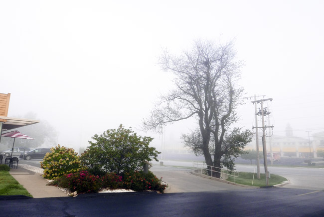 Today was a foggy morning