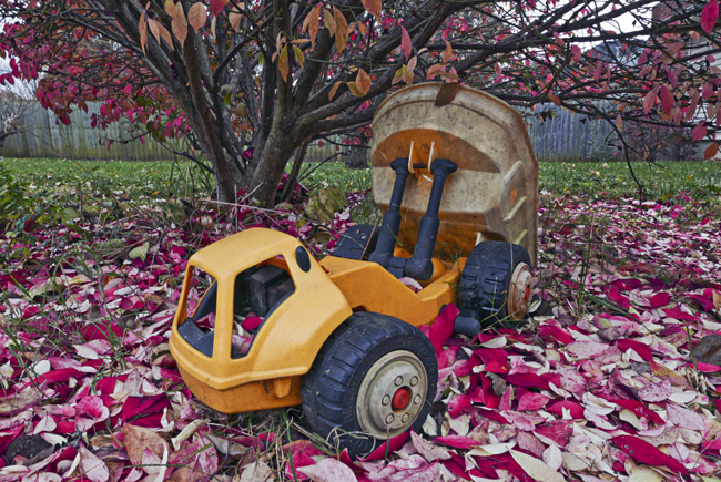 Toy dump truck and a Burning Bush