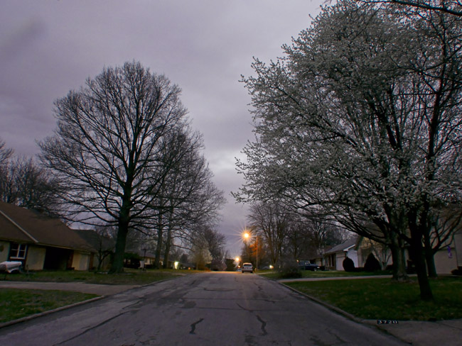 Ferguson Streetscape in Dusk Grey