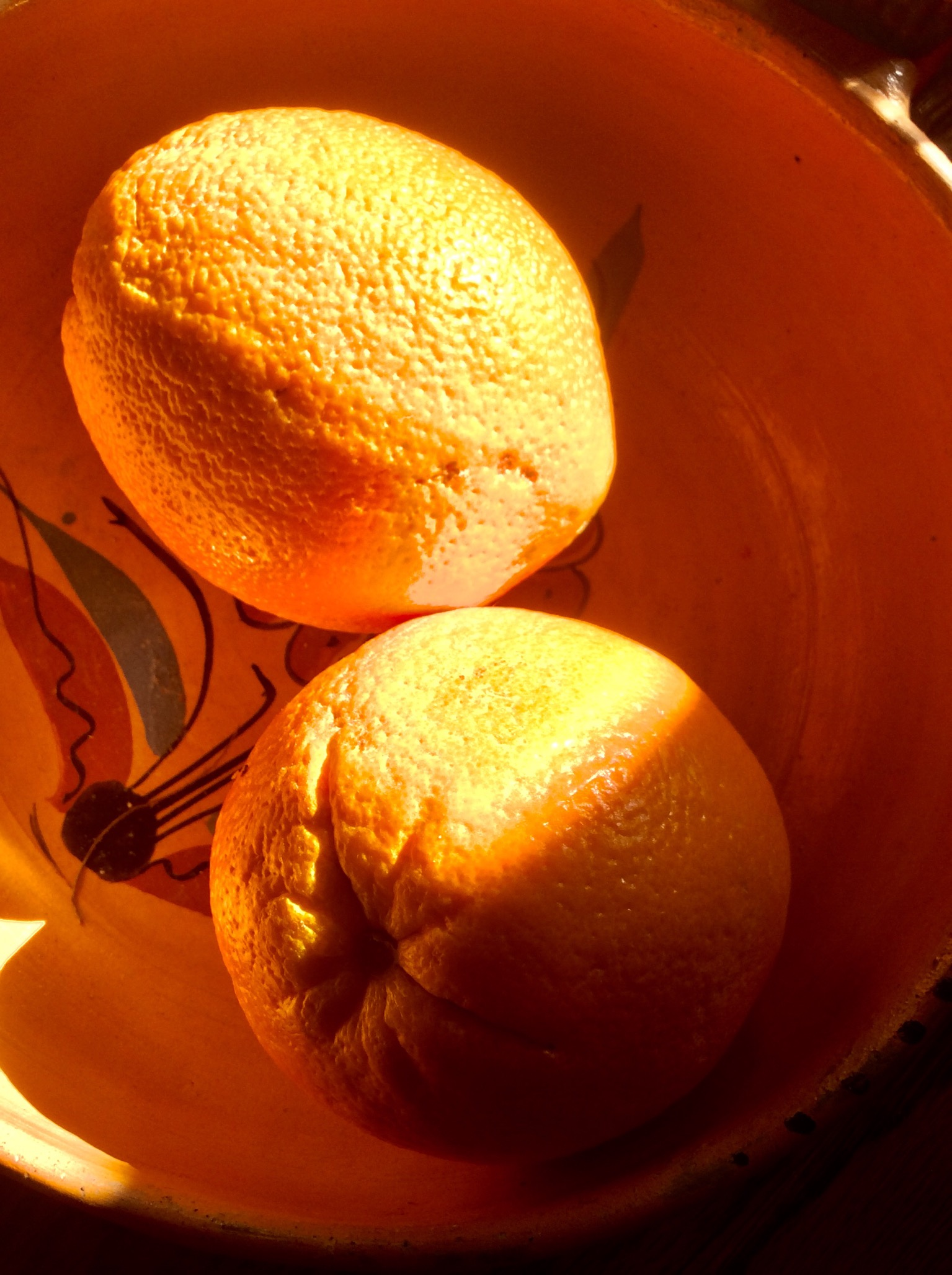 Two large navel oranges