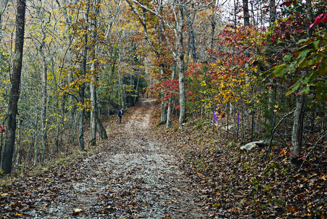 The back road into the Busiek State Forest and Wildlife Area