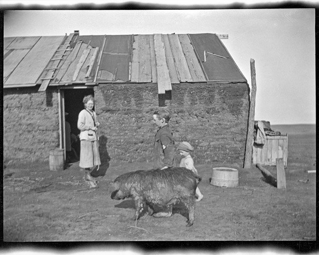 A homestead sod house, circa 1919