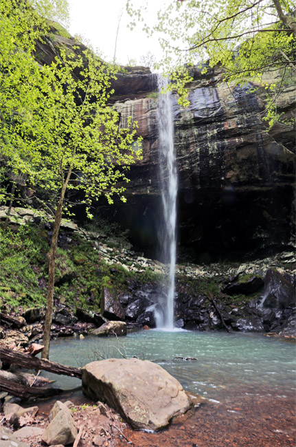 Spring at Sweden Creek Falls, Arkansas